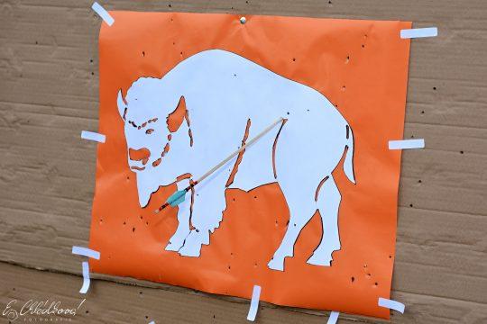 Ulov si svého bizona obrázek